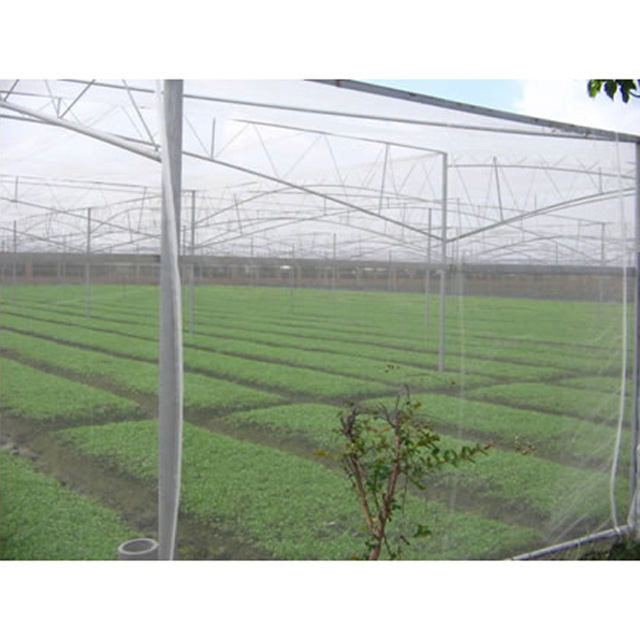 HDPE 80gsm green or other color anti hail net