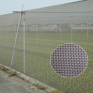 HDPE 140gsm transparent white color or other color Anti Insect Net