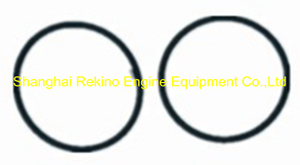 Cummins KTA19 Injector seal O ring 3010510 205216