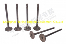 Yuchai engine parts intake valve M6600-1003111