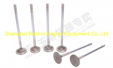 Yuchai engine parts intake valve C3000-1003111A