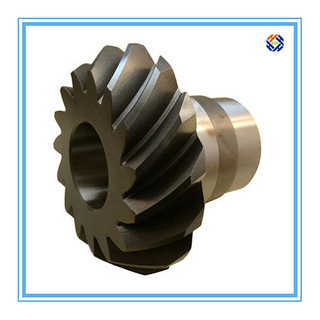 Custom Forging Parts Spiral Bevel Gear