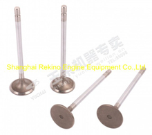 Yuchai engine parts intake valve G2000-1003111