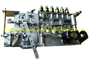 5B62 BHT6B120R Longbeng fuel injection pump for Weichai WD615