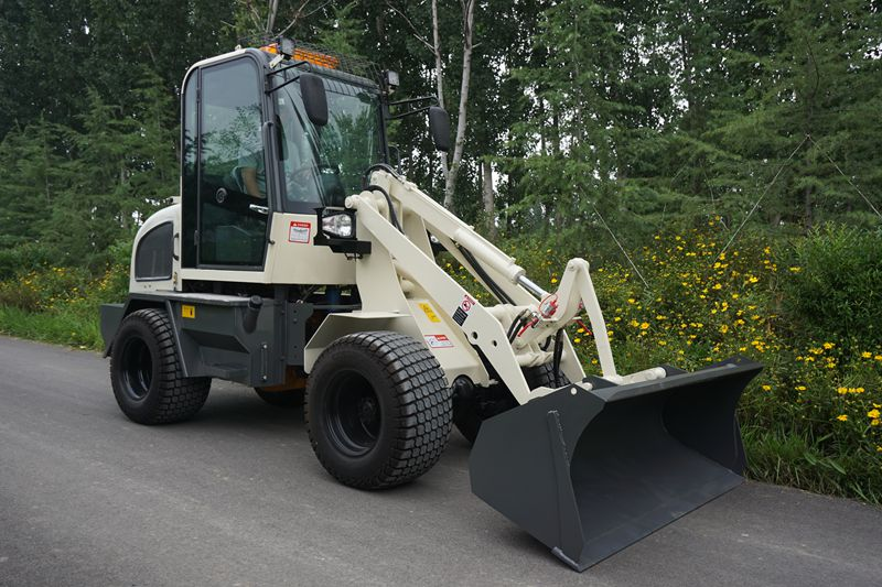 ZL08-800kg small loader with CE