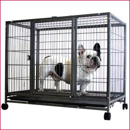 Heavy Duty Metal Dog Cage Kennel with 4 Wheels