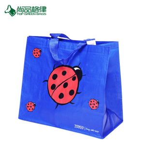Wholesale High Quality China Eco Custom Beetles Pattern PP Non Woven Laminated Shopping Bag Popularize
