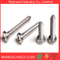 Phillips Pan Head Self-Tapping Screw in Stainless Steel 304
