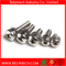 Phillips Combination Screw Phillips Pan Head Self Drilling Screw
