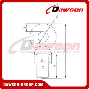 DS244 G80 NAV Special Lifting Eye Bolt