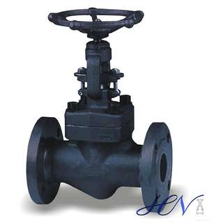 Flanged Forged API 602 Non Return Globe Valve