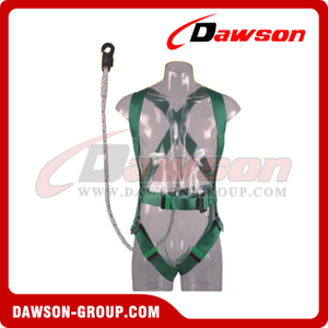 DS5123 Safety Harness EN361
