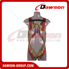 DS5102 Safety Harness EN361