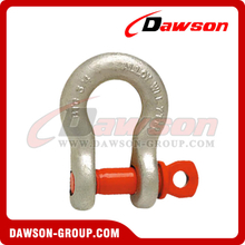 G209 Forged Alloy Screw Pin Anchor Shackle