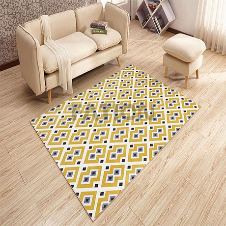 Popular Print Design Floor Carpet Decor Area Rug