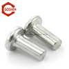 Stainless Steel Solid rivets