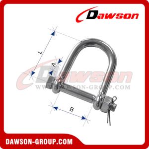 Stainless Steel Wide D Shackle with Nut and Cotter Pin