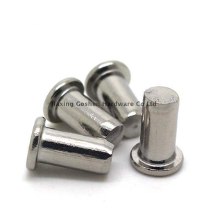 1/4 inch stainless steel solid rivets in boat
