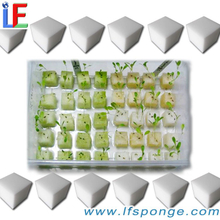 Soilless Cultivation Sponge