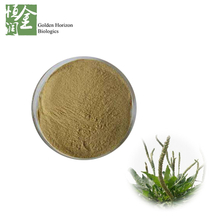 GMP Weight Loss Psyllium Extract