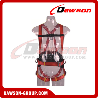 DS5108 Safety Harness EN361