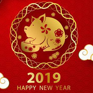 senfeng laser happy new year30
