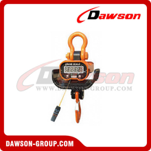DS-CS9 Heat-Proof Type Crane Scale