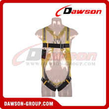 DS5170 Safety Harness EN361
