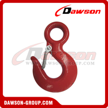 DS130 Eye Hoist Hook with Latch