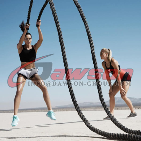 Dawson Fitness Rope Application