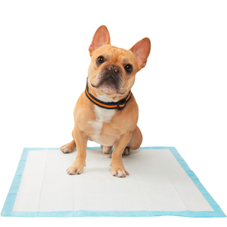 Disposable Super Absorbent Odor Control Puppy Dog Toilet Training Pad