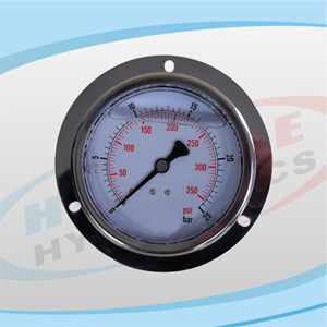 PG100 Series Stainless Pressure Gauge