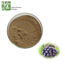 Acanthopanax Extract Siberian Ginseng Extract Eleutherosides Extract