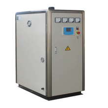 Energy Saving 50 Kg Electric Hot Water Boiler