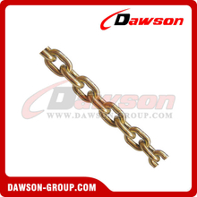 G70 Transport Chain NACM1996/2003 Standard