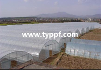 6mil Greenhouse film