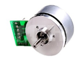 Outer Rotor Brushless DC Motor 60mm