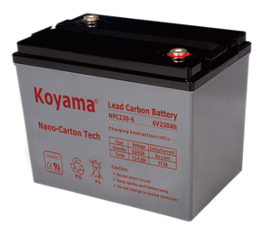 6V 230AH High Quality Deep Cycle Lead Carbon Battery NPC230-6