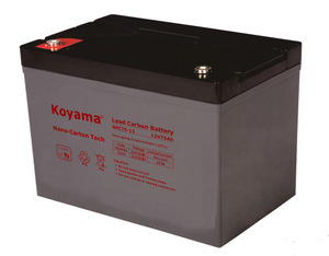 12V 75AH High Quality Deep Cycle Lead Carbon Battery NPC75-12