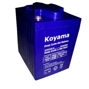 6V225AH Deep Cycle Gel Battery DCG225-6