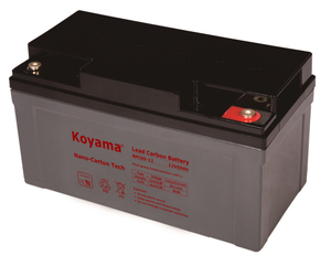 12V 60AH High Quality Deep Cycle Lead Carbon Battery NPC60-12
