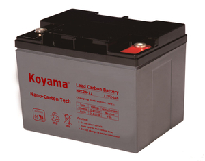 12V 24AH High Quality Deep Cycle Lead Carbon Battery NPC24-6