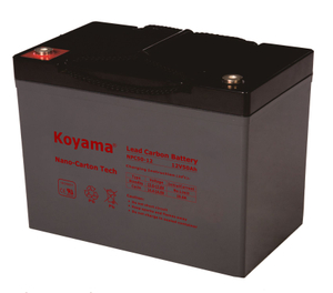 12V 50AH High Quality Deep Cycle Lead Carbon Battery NPC50-12