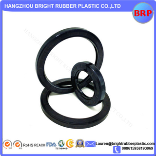 Double Lip Viton Rubber Metric Shaft Oil Seal with Spring