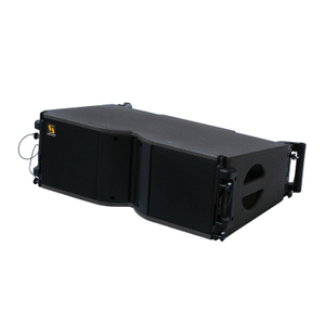 KARA Dual 8 Inch 2 Way Line Array Source Element