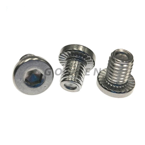 Stainless Steel 304 316L Non=standard Cylinder Head Hex screws