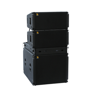 Vera20 Dual 10 '' 2 Way Line Array Speaker