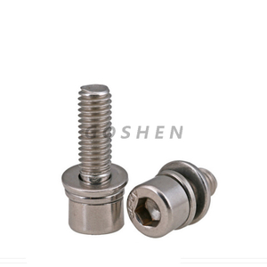 Stainless Steel Hex Socket Head Cap Allen Screw with washer
