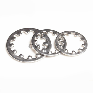 Din 6797 SS 304 316 Internal Tooth Lock Washers