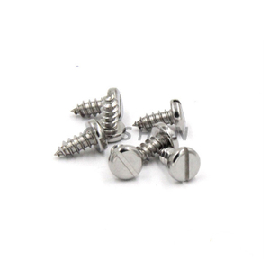 Stainless Steel 304 316 St2.2 Slotted Pan Head Tapping Screws